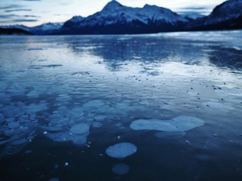 Uniquely Alberta Adventures: Experience Frozen Bubble Lake AB
